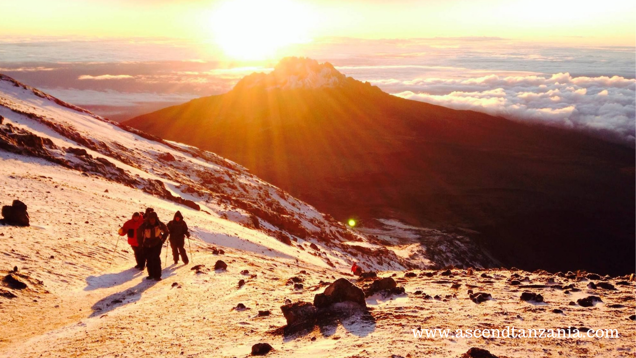 Comfortable Trek on Mount Kilimanjaro