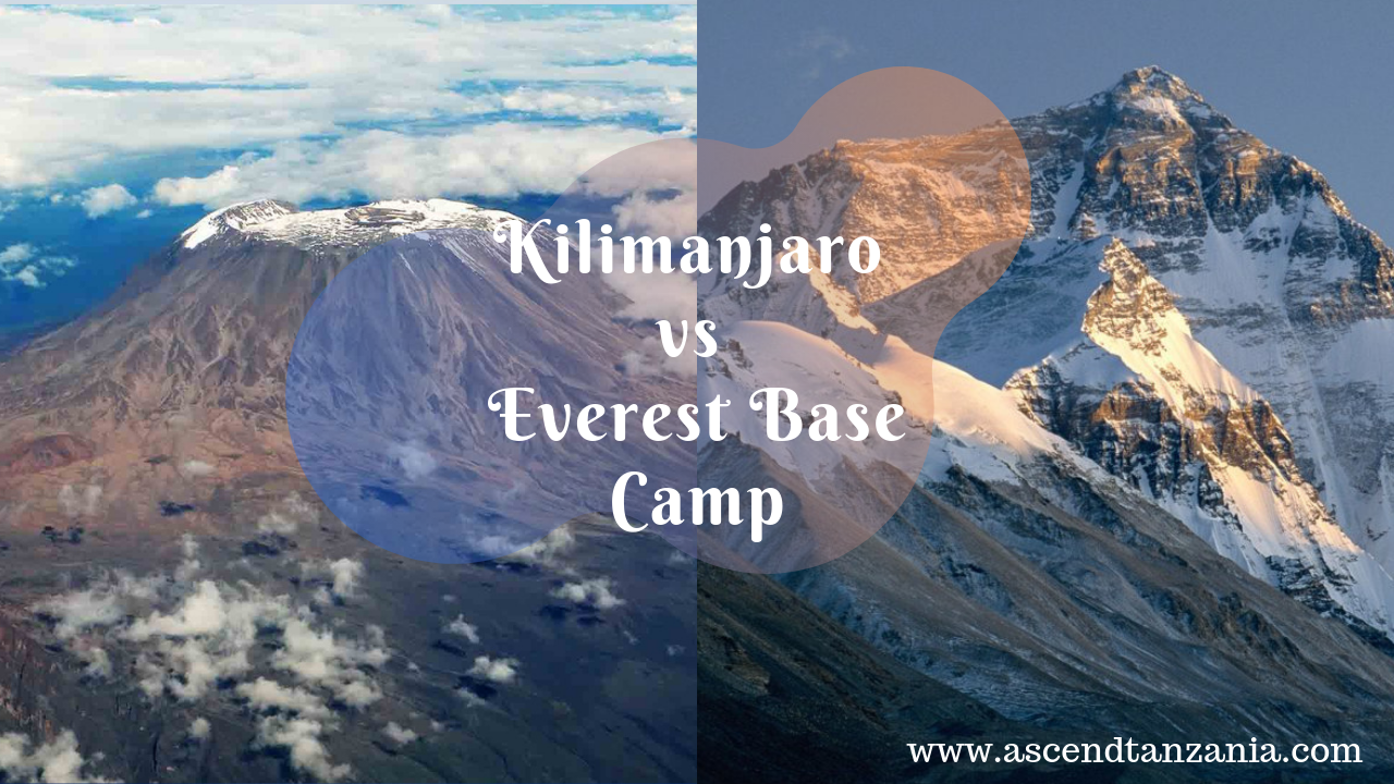 Mount Kilimanjaro vs. Mount Everest Base Camp