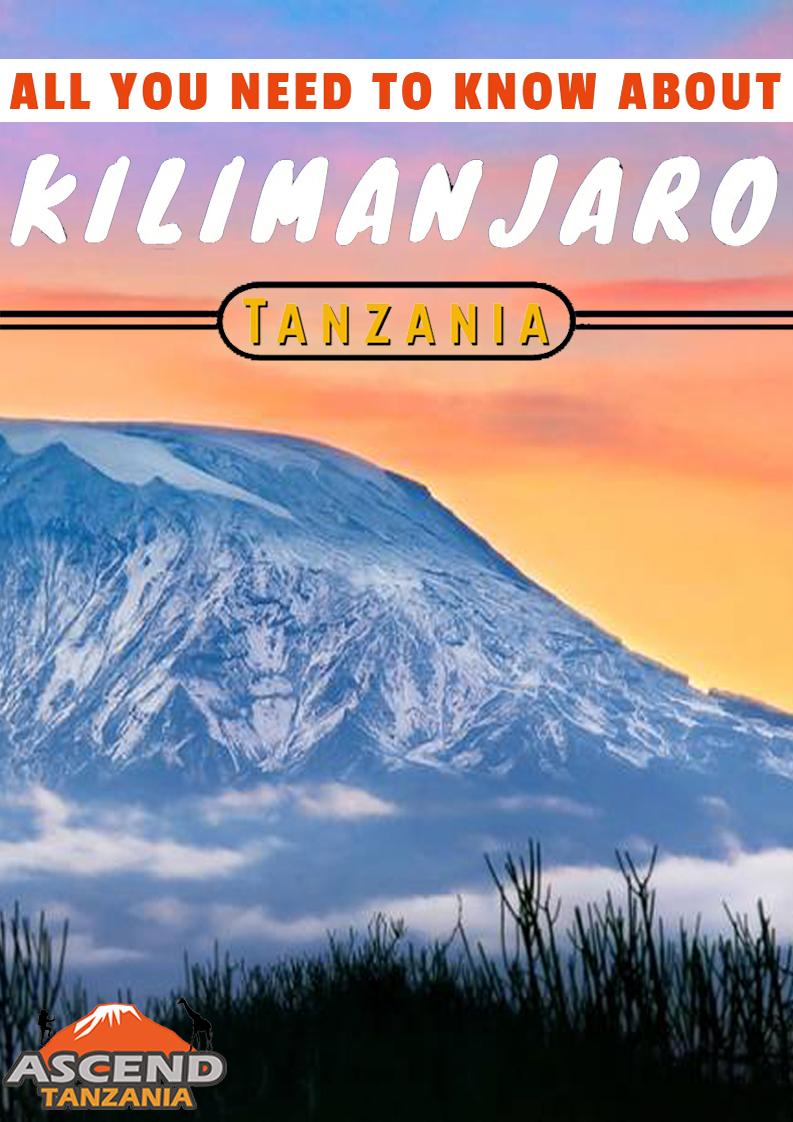 kilimanajro guide book