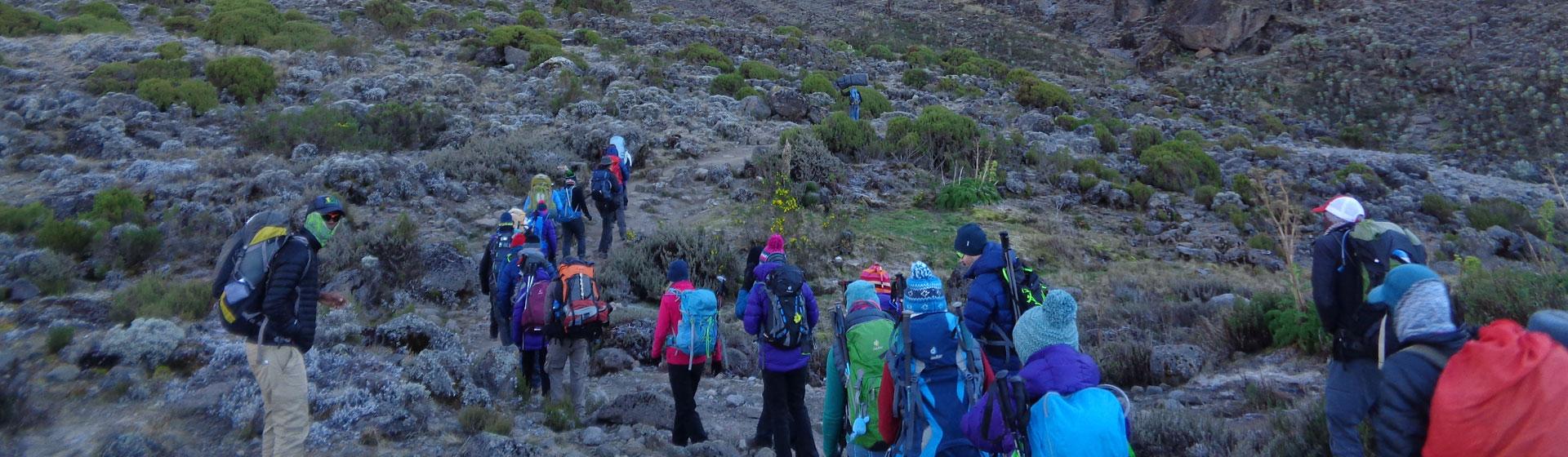 Lemosho Route Climbing Facts