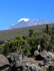 Marangu Route Climbing Facts