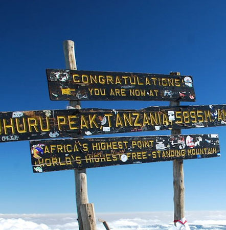 Kilimanjaro Success Rate