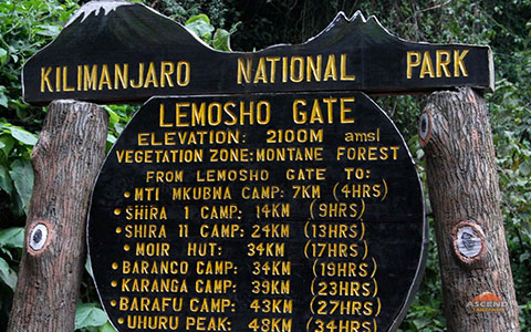 8 Days Lemosho Route